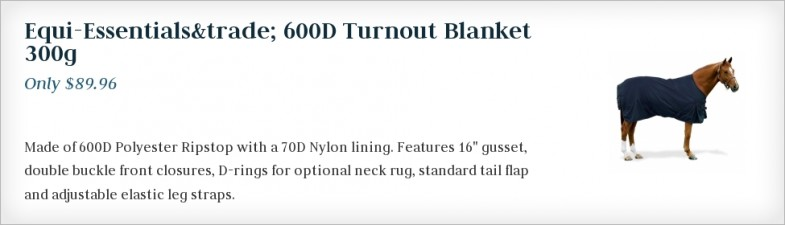 Equi-Essentials  600D Turnout Blanket 300g