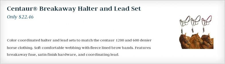 Centaur® Breakaway Halter and Lead Set