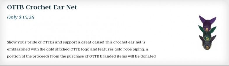 OTTB Crochet Ear Net